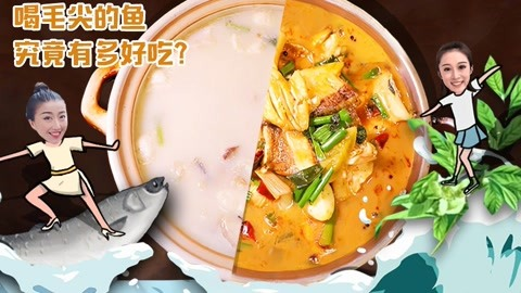 中国最壕餐馆竟用毛尖养鱼?一天只卖一条,有钱都吃不到!河南8