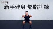 新手健身 燃脂訓練
